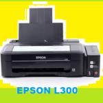 Bagaimana Cara Reset Printer Epson L300 ?